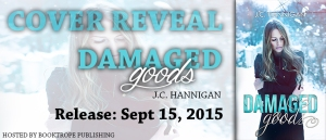 COVER REVEAL_DAMAGED GOODS_BANNER